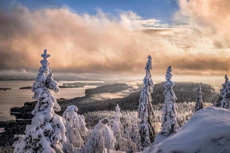 Valokuvaus - Koli.fi > photo:Asko Kuittinen