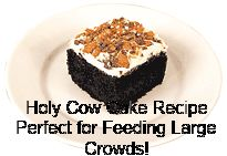 Looking For An Easy Cake Recipe? Try My Holy Cow Cake Recipe - Mommy of a Monster & Twins