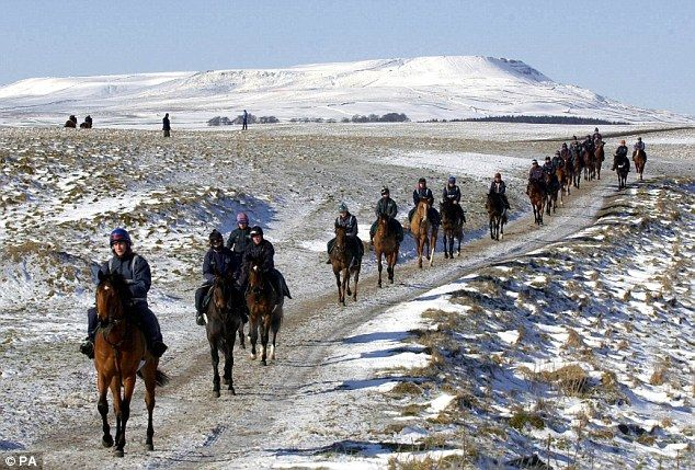 The gallops at Middleham, North Yorkshire