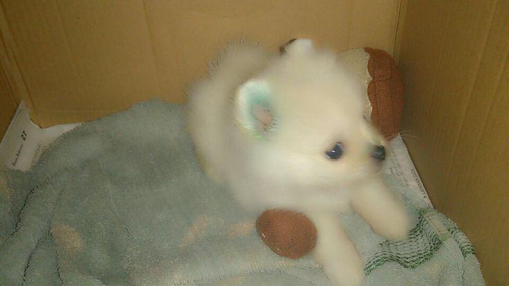 My doll <3