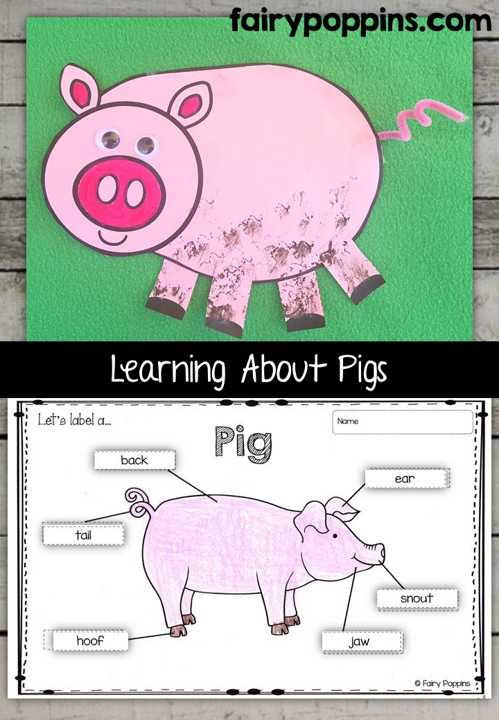 Pig Craft Template And Worksheet Activities Labeling Description Writing
