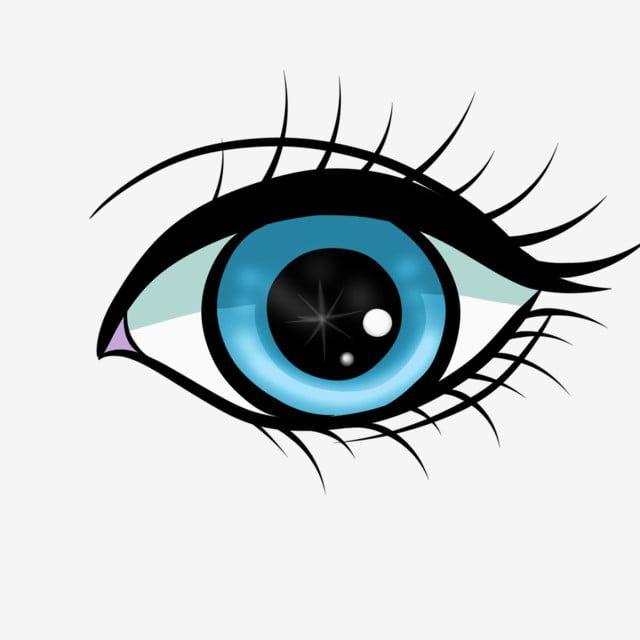 Human Organ Eye Illustration Eyes Clipart Human Organs Eyes Black Eyes Png Transparent Clipart Image And Psd File For Free Download Ilustrasi Gambar Manusia