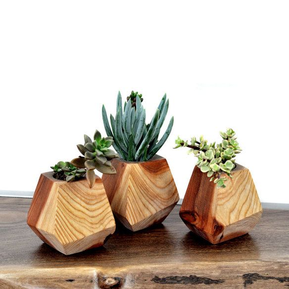 Brighten up that desk space with these beautiful + geometric #succulent planters!