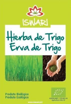 HIERBA DE TRIGO (polvo) Rica en enzimas vivas y en clorofila purificadora y desintoxicante. https://www.facebook.com/GaliasturSalud/photos/a.750677…