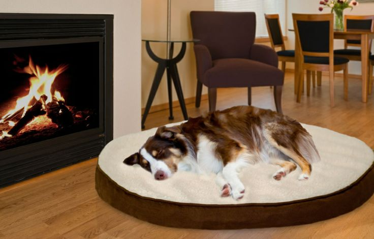 Deluxe Gusseted Faux Sheepskin and Suede Orthopedic Pet Mattress on Real UK Deals only in just £25.99  http://www.realukdeals.com/deluxe-gusseted-faux-sheepskin-and-suede-orthopedic-pet-mattress-258.html