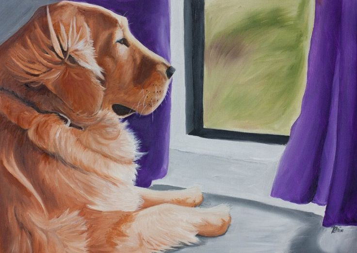 Inside the Mind of your Pet - What is your pet thinking when he is sitting in front of the window staring intently at the open space surrounding him?