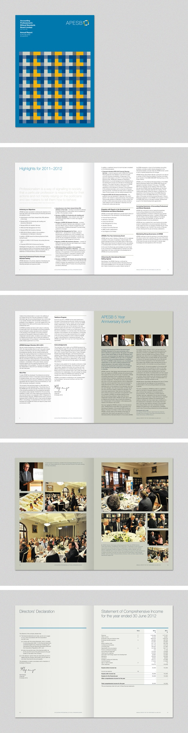 APESB Annual Report. www.fenton.com.au #communication #PR #branding #graphicdesign #annualreport