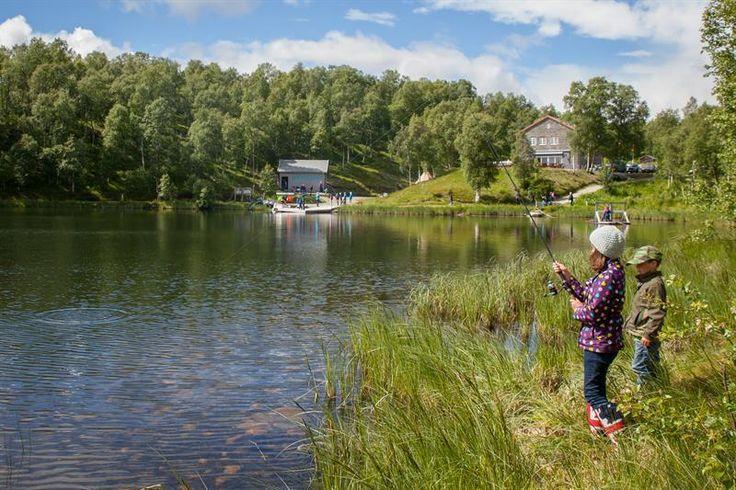 Rørosmuseet inviterer hele familien – og barna spesielt – til morsomme og lærerike opplevelser ved Doktortjønna friluftspark! Her kan du i sommer kjøre Elias-båten, padle i kano, prøve spellflåten, fløte tømmerstokker i tømmerenna, lafte lekehus, besøke husdyra, leke i de mange morsomme klatre- og balanseapparatene, utforske naturstiene, eller prøve fiskelykken. I stenhuset finner du utstillinger og informasjon om Femundsmarka nasjonalpark og en enkel kafé. For dagsprogram...