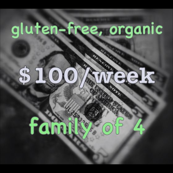 $100/week Gluten Free Shopping at Trader Joe's | Slow For The Cone Zone