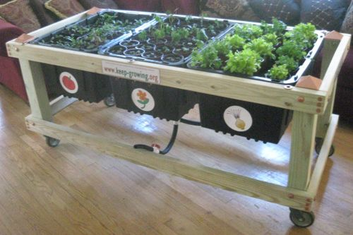 Waist high garden ogr d pinterest - Waist high raised garden bed plans ...