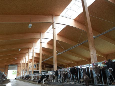 Cow stable Mank (AT)