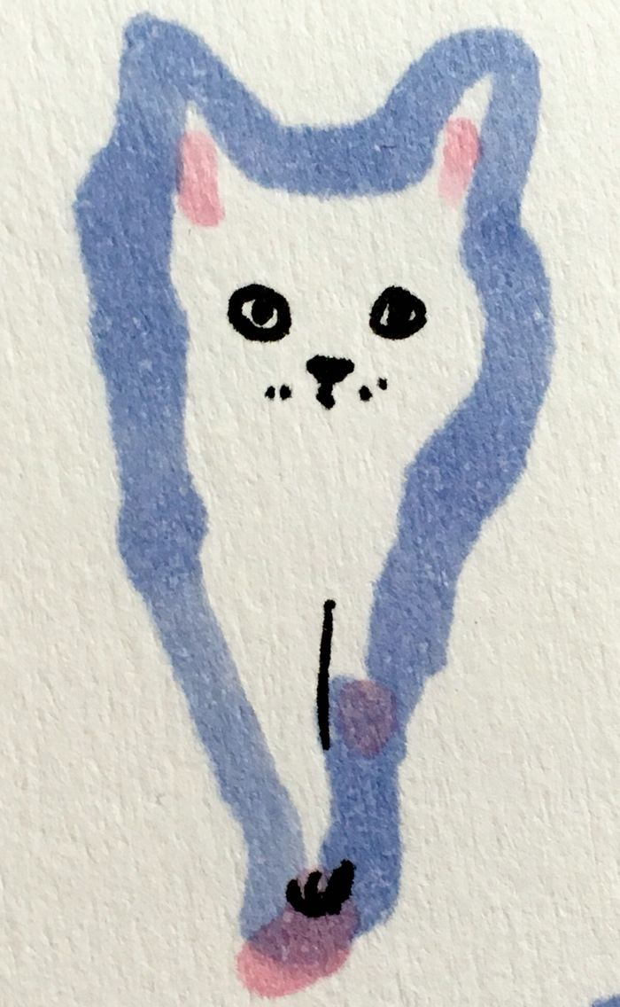 Kitten by Marie Åhfeldt, Mås Illustra. www.masillustra.se #kitten #cat #illustration #drawing #masillustra