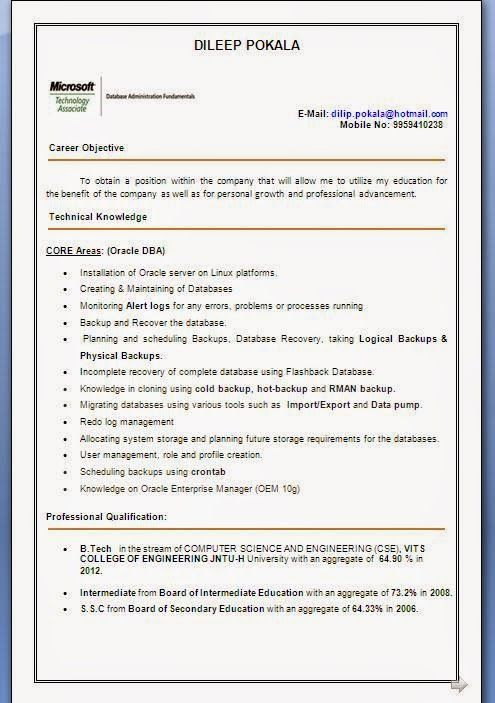 chef cv examples Beautiful Curriculum Vitae \/ Resume Format with - sample oracle dba resume