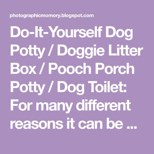 Do-It-Yourself Dog Potty / Doggie Litter Box / Pooch Porch Potty / Dog Toilet: For many different reasons it can be useful to have a place...