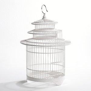 31 best images about cage oiseaux on pinterest large - Cage a oiseaux decorative ...