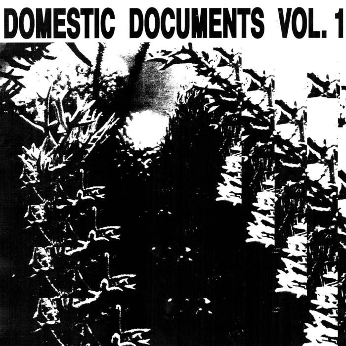 ▶︎ Domestic Documents: Compiled by Butter Sessions and Noise In My Head | Noise In My Head