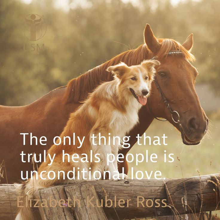 """""""The only thing that truly heals people is unconditional love."""" Elizabeth Kubler Ross Quote"""