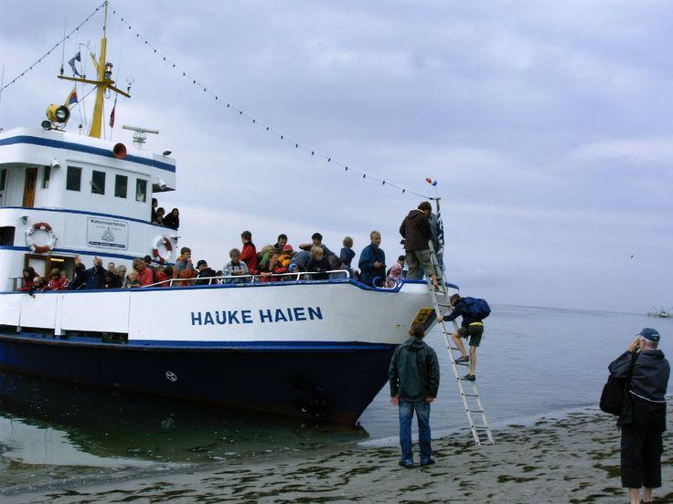 """Ausbooten auf dem Japsand. Nur der nördliche Teil dieser Sandbank darf betreten werden. Von Hallig Hooge aus gibt es tägliche Wattwanderung hierher (""""Badestrand von Hooge"""")."""