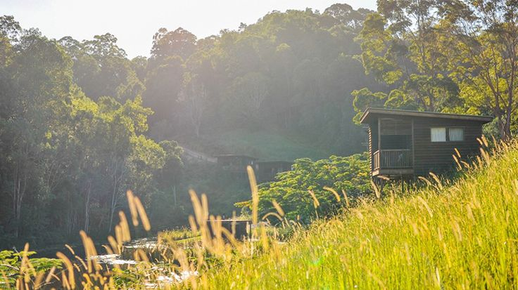 Hosanna is a 100-acre family farmstay just behind the busy coastal strip of Northern NSW, offering farm holidays, accommodation, camping activities and functions for individuals, families, groups, and schools