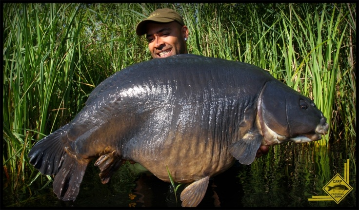 A hugely framed 40lb mirror that couldn't resist Ed's CELL tactics