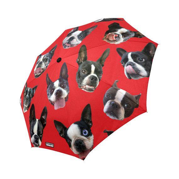 Boston Terrier Umbrella - dog umbrella - funny photos of boston terriers - custom background color