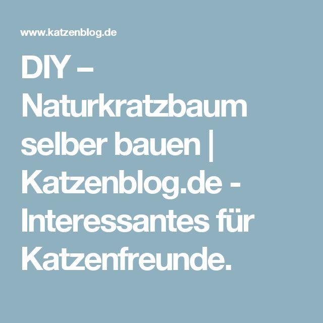 DIY – Naturkratzbaum selber bauen      Katzenblog.de - Interessantes für Katzenfreunde.