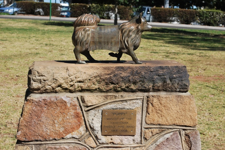 "Puppy In Toowoomba  ""Puppy"" led the Toowoomba Thistle Pipe Band proudly during local parades for years. For his service, he received a small monument in the town's park. The moral? Australians loves feistiness."