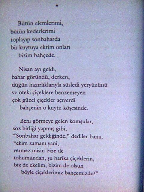 Halil Cibran/ Kum ve Köpük