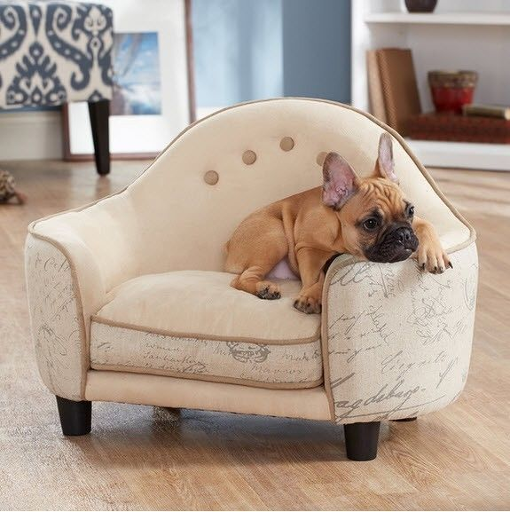 French Classic Pet Cat Dog Furniture Sleeping Sofa Bed