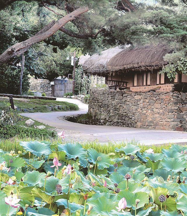 외암마을(Oeam folk village), Asan, Korea