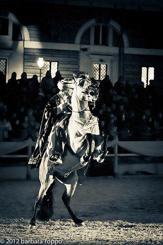 2012_02_16_Arrivano_i_nostri_BARBARAROPPO-4753