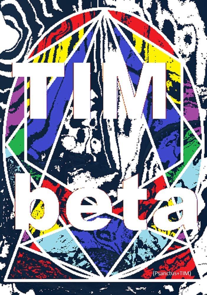 TIMbeta 2017