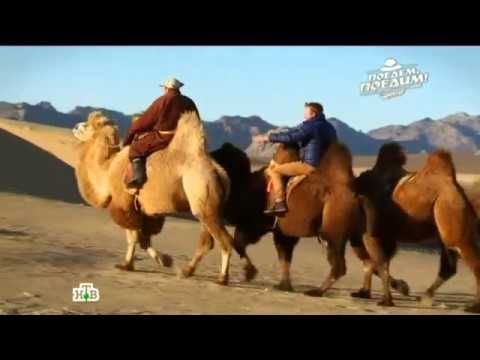 """""""Поедем, поедим!"""": Монголия"""