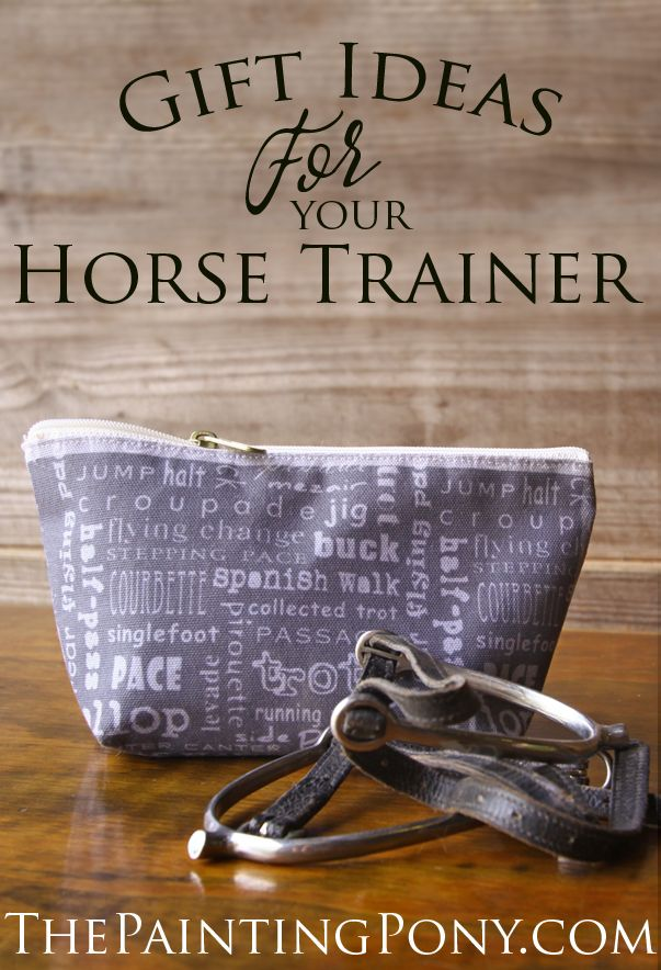 10 Gift Ideas For Your Horse Trainer Christmas Horses