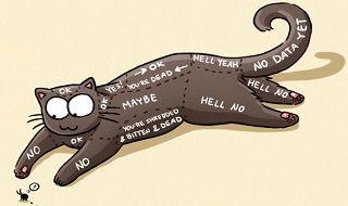 Hilarious Catsu the Cat Comics