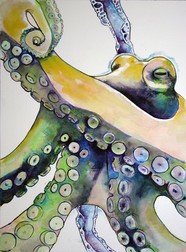"I really love cephalopods. This is an octopus. Watercolor on cotton paper. 9"" x 12"" Krislyn Dillard"