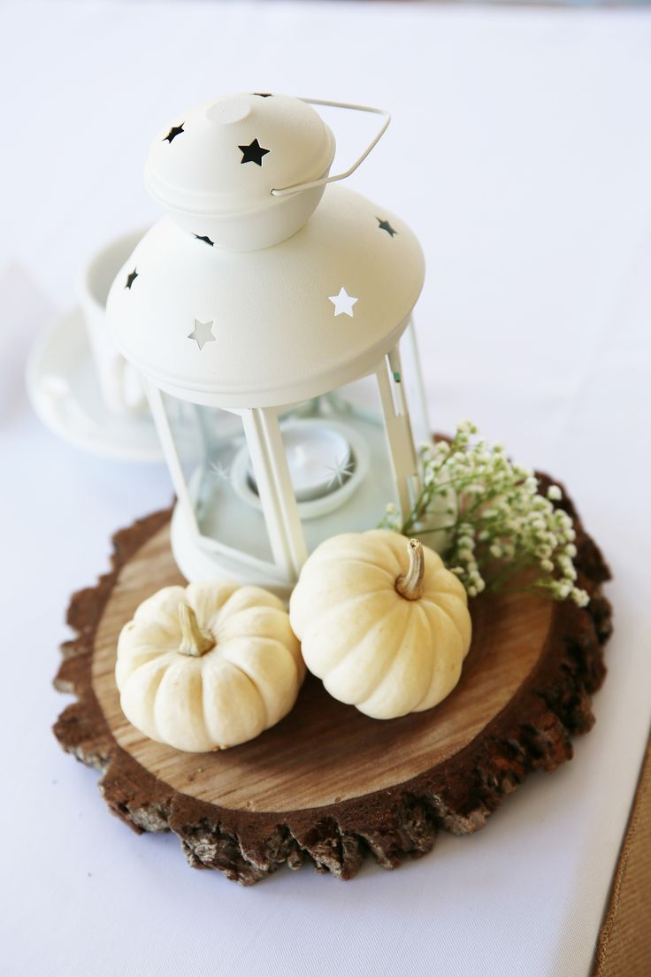 Simple fall centerpiece. Photo taken by Foto Girl at RedCrest