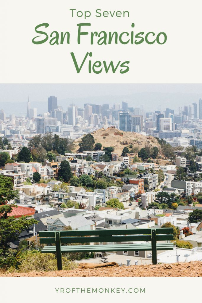 Top 7 San Francisco views dogs