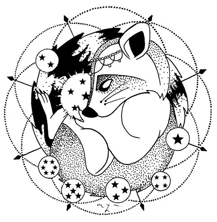 Raccoon Baby With Dragonballs