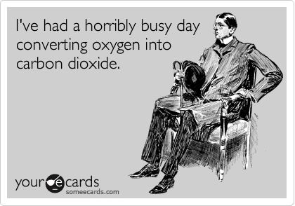 Horrible Business, I M Exhausted, Business Business, Hard Times, Science Humor, Hard Work, True Stories, Rough Day Meme, Carbon Dioxide