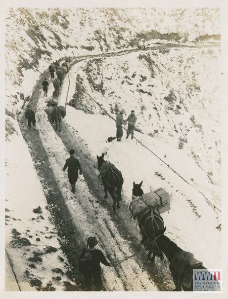 """Photograph. """"26 Dec 44. 5/MM-44-32576. Fifth Army, Monghidoro, Italy. Wire crew from 63rd Signal Battalion, checking communication wire while convoy of mules led by Italian muleskinners goes by. The mules are hauling rations to outfits not possible to reach by truck. Photo by Hartman. 3131 Signal Service Co."""" Monghidoro, Italy. 26 December 1944"""