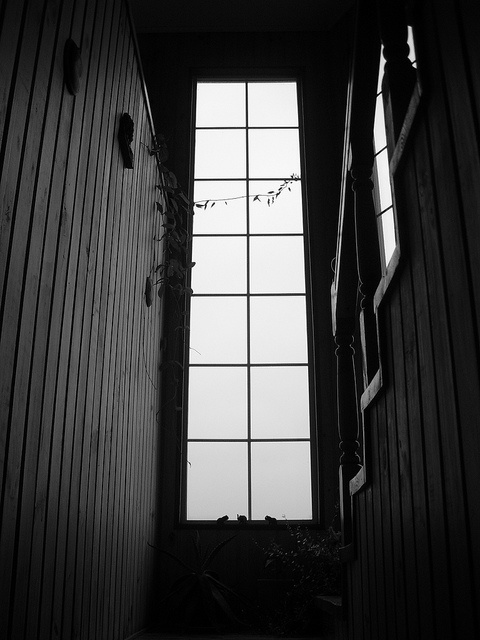 Black & blanco by nuevediezonce, via Flickr