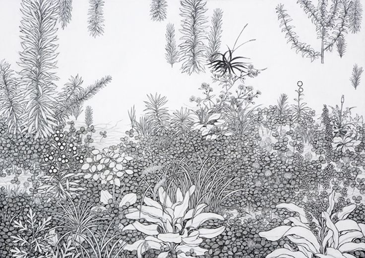 Yukiko Suto | Take Ninagawa
