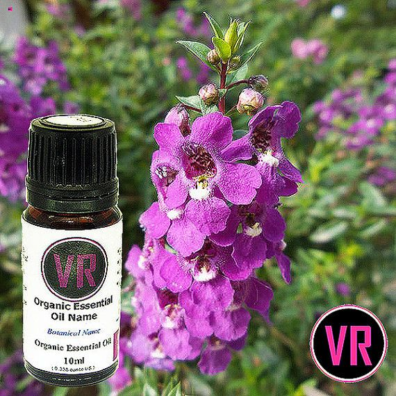 10ml Clary Sage 100 Pure Organic Essential Oil by VandaRoseAroma