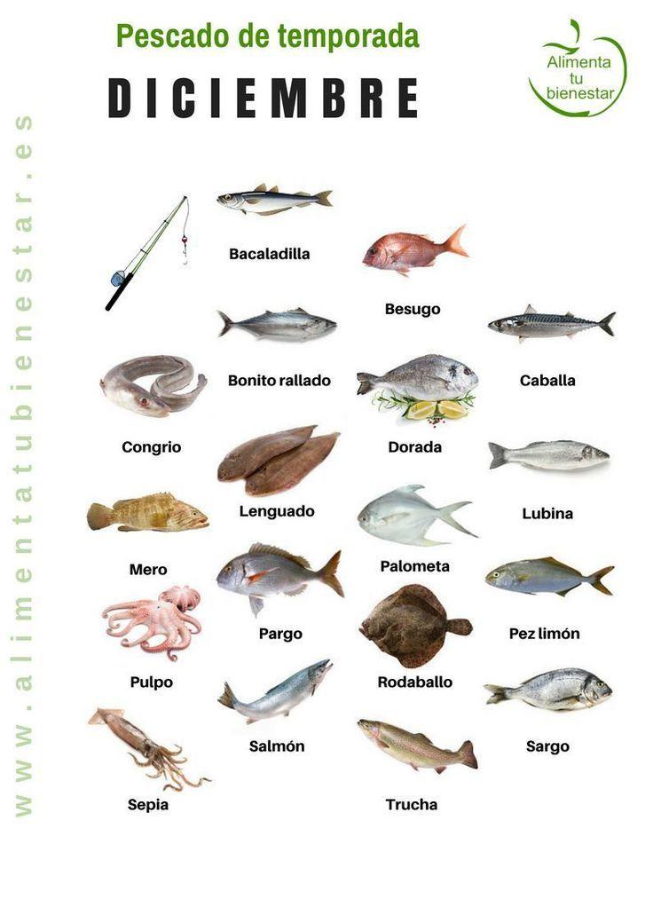 Pescado de temporada en diciembre | https://lomejordelaweb.es/