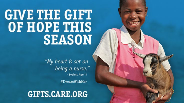 Charity Gifts Catalog   CARE