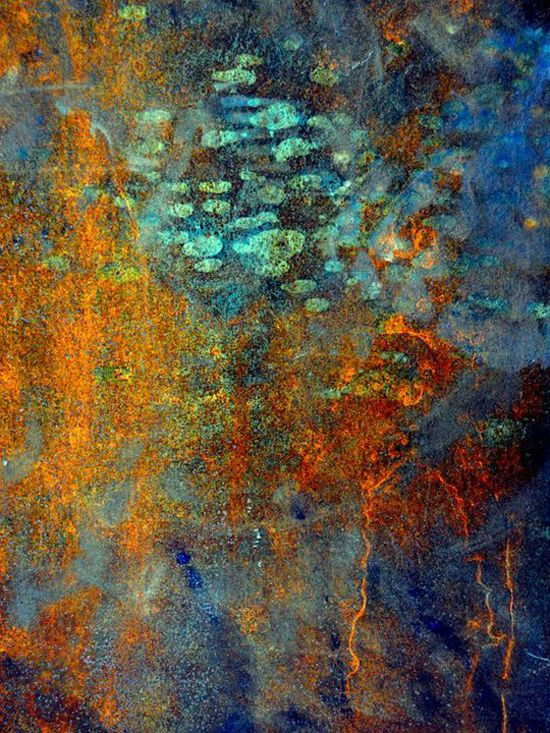 Autumn Shimmer I by LuAnn Ostergaard http://www.flickr.com/photos/28647782@N07/9273300282/ http://www.luannostergaard.com/