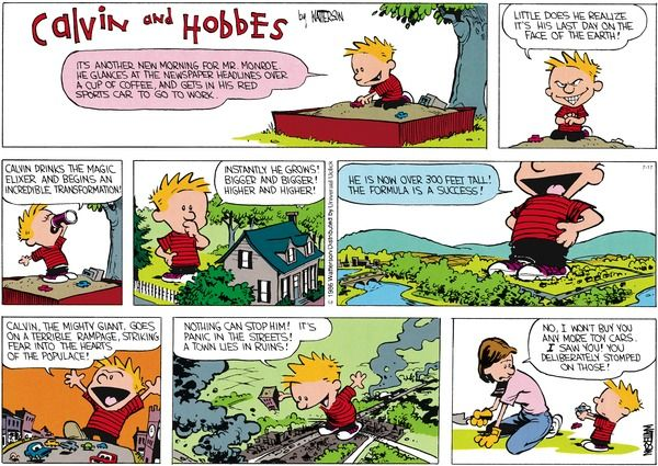 Calvin and Hobbes comic strip for Jul/17/2016.