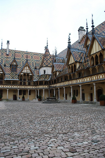 Hospices de Beaune - Bourgogne, France I think that the Bourgo's came from here to