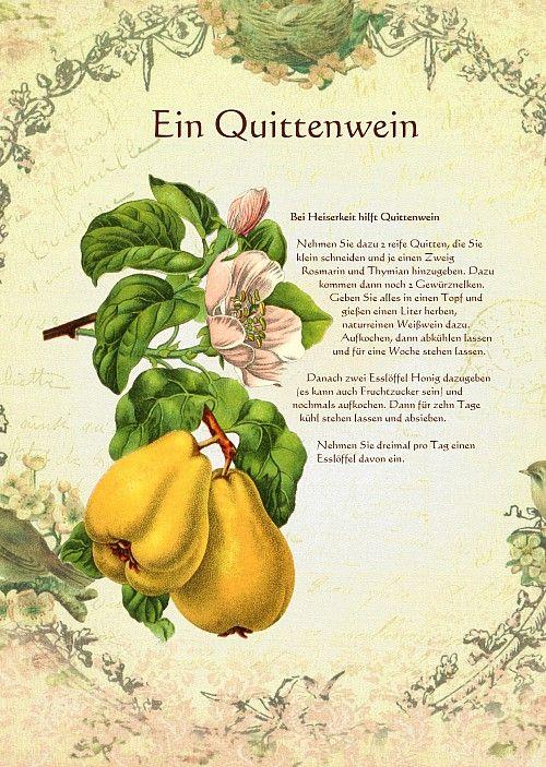www.kraeuter-verzeichnis.de Heilwein-Heilschnaps bei-heiserkeit-hilft-quittenwein-amp.shtml